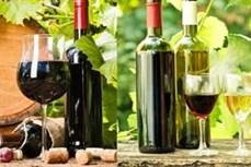 宁顺省致力于打造葡萄酒品牌