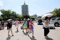 积极推广越南旅游形象 大力吸引韩国游客