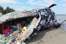 科学研究为塑料垃圾污染防治政策夯实基础