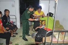 Nghệ An cứu sống nạn nhân ngộ độc lá ngón