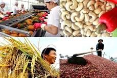 越南主要农产品已销往160个国家和地区