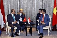 越南政府总理阮春福在第34届东盟峰会间隙会见东盟各国领导人