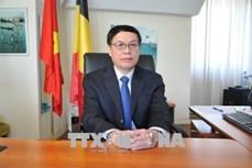 越南驻欧盟使团团长武英光:越南与欧盟贸易关系取得巨大突破