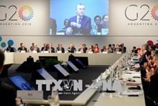 越南成为国际社会在解决国际事务中的可靠伙伴