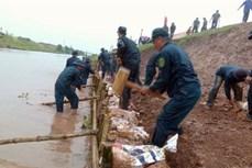 越南到2020年国家自然灾害防范计划获批