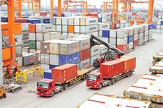 《越南与欧盟自由贸易协定》:有助于简化商品进出口手续