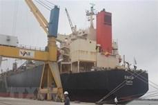 2019年上半年全国港口货物吞吐量同比增长13%