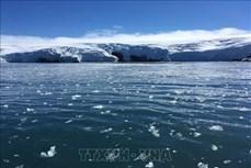 Diện tích băng ở Nam Cực thu hẹp một cách bí ẩn