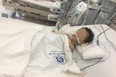 Bé trai 27 tháng tuổi nguy kịch do ngộ độc paracetamol