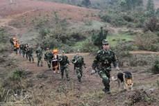 Biên phòng Lạng Sơn chủ động ngăn chặn hành vi xuất nhập cảnh trái phép qua biên giới