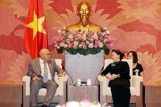 阮氏金银:越南一直以来是古巴的好同志、好朋友和好兄弟