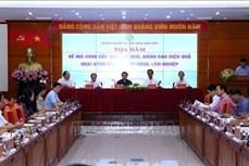 到2020年越南基本完成农林业公司的重组工作