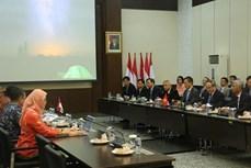 胡志明市希望与印尼加强应对气候变化等方面的合作