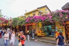 会安市多管齐下将寄宿旅游打造成为 特色旅游产品