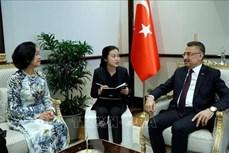 中央民运部部长张氏梅对土耳其进行工作访问
