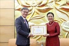 """越南向老挝大使授予""""致力于各民族和平友谊""""纪念章"""