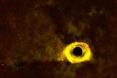 """Khoảnh khắc hố đen """"xé xác"""" một ngôi sao"""