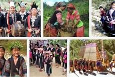 越南将于10月1日起对全国53个少数民族经济社会发展状况展开开展调查
