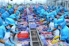 2019年前8月越南水产品出口总额达55.2亿美元