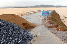 Hà Tĩnh: Mưa lũ, triều cường làm sạt lở hàng trăm mét kè biển, uy hiếp đời sống người dân