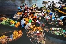 越南体验式旅游潜力巨大