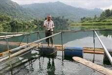 Nỗ lực giảm nghèo bền vững- Thực tiễn từ tỉnh Nghệ An