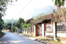 Đồng bào tái định cư Sơn La đón xuân no ấm trên quê hương mới
