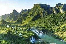 越南边境地区奇观——板约瀑布