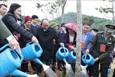 """Thủ tướng Nguyễn Xuân Phúc phát động """"Tết trồng cây đời đời nhớ ơn Bác Hồ"""" tại Yên Bái"""