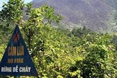 Huyện miền núi Khánh Vĩnh tăng cường công tác bảo vệ rừng