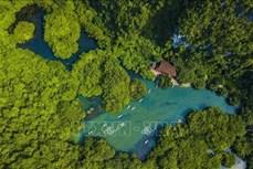 Lễ khai mạc Năm Du lịch Quốc gia 2020 - Hoa Lư, Ninh Bình sẽ diễn ra vào thời điểm thích hợp