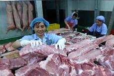 农业与农村发展部:从本月起猪肉供应量回升