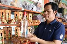 Phát triển các sản phẩm chế biến từ trái nho Ninh Thuận