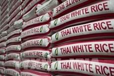 泰国大米出口行业2020年面对种种危机