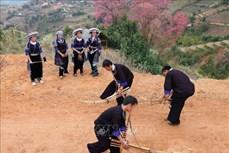 Triển khai thực hiện Đề án tổng thể phát triển kinh tế - xã hội vùng đồng bào dân tộc thiểu số và miền núi giai đoạn 2021 - 2030