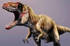 """Argentina phát hiện hóa thạch """"họ hàng xa"""" của loài khủng long bạo chúa"""