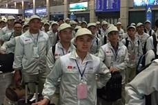日本施行新签证政策后 获得签证的越南劳动者占比过半