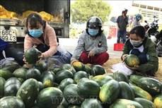 Dịch COVID-19: Hỗ trợ, giúp đỡ nông dân tiêu thụ nông sản
