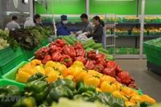 EVFTA——越南蔬果扩大出口市场的绝佳机会