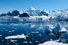 Ngày nóng kỷ lục ở Nam Cực