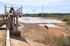 Kon Tum khan hiếm nguồn nước tưới, nước sinh hoạt