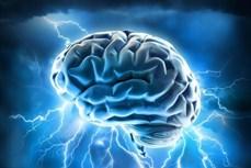 """""""Trẻ hóa"""" hệ miễn dịch - bước tiến lớn điều trị tổn thương não bộ"""