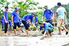 促进越南年轻人的全球志愿服务活动