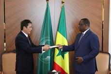 塞内加尔希望加强与越南在各领域合作