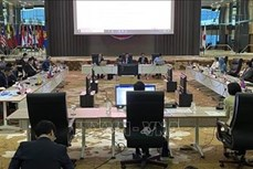 2020年东盟主席年:东盟与日本致力于加强战略伙伴关系