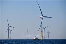 Điện từ năng lượng tái tạo tiết kiệm đáng kể chi phí sản xuất