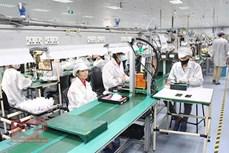北江省力争实现2020年引进投资总额达10亿美元的目标