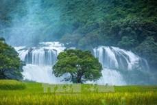 Tỉnh ủy Cao Bằng công bố quyết định thành lập Đảng bộ huyện Trùng Khánh