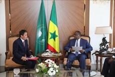 越南与塞内加尔扩大合作空间的潜力巨大