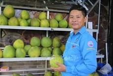 Hiệu quả mô hình thanh niên khởi nghiệp xanh tại Khánh Hòa